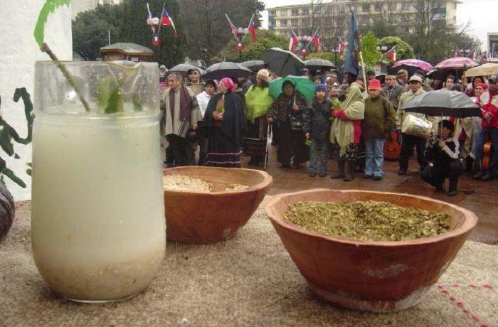Muday de trigo mapuche