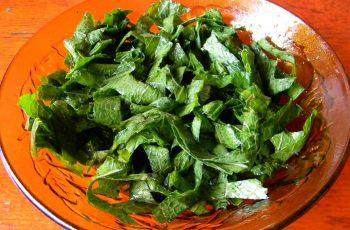 Receta de ensalada de romaza chilena
